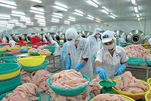 Từ Chi lê, cá tra Việt có cơ hội tiếp cận 33 thị trường khu vực Mỹ Latinh
