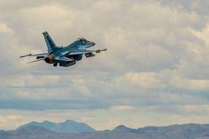Mỹ sơn máy bay F-16 'giả dạng' Su-57 của Nga