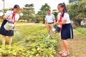 Vườn rau học đường