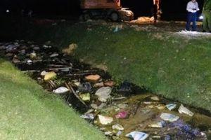 Thạch Hà - Hà Tĩnh: Số lợn chết vứt xuống kênh dương tính với dịch tả lợn Châu Phi