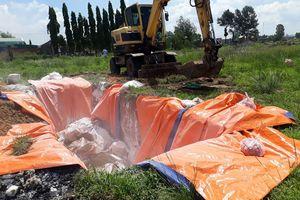 Khởi tố vụ giết mổ, tàng trữ lợn nhiễm dịch tả lợn châu Phi
