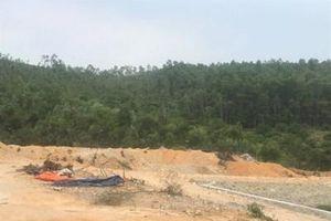 Cận cảnh hàng nghìn m2 đất rừng bị san gạt trái phép ở Quảng Ninh