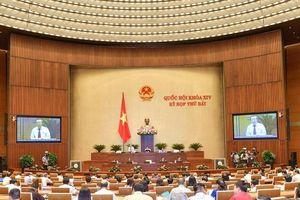 Sớm ban hành NQ về chính sách pháp luật đất đai tại đô thị