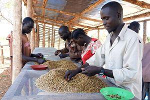 Nam Sudan tăng cường hội nhập