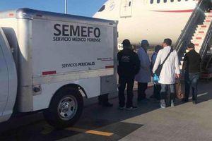 Hành khách thiệt mạng trên máy bay sau khi nuốt 246 túi cocain