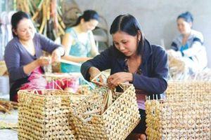 Phát huy vai trò của tài chính vi mô đối với phụ nữ nghèo