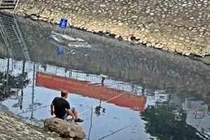 Cá 'khủng' ngay dưới khúc sông Tô Lịch đang được thí điểm làm sạch