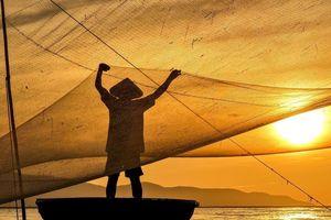 Khoảnh khắc buổi sáng tinh mơ ở đô thị, vùng quê Việt Nam