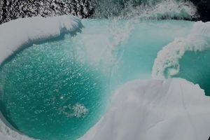 Tảng băng chứa bãi tắm lạc trôi trên biển