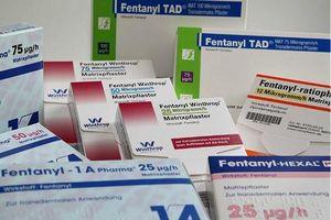 Mỹ: Triệt đường dây hối lộ bác sĩ kê thuốc giảm đau