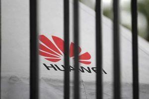 Huawei 'tung chiêu mới' lên tòa án Texas chống lại Mỹ