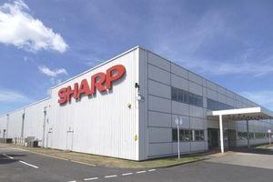 Sharp tính chuyển sản xuất máy tính cá nhân từ Trung Quốc tới Việt Nam hoặc Đài Loan