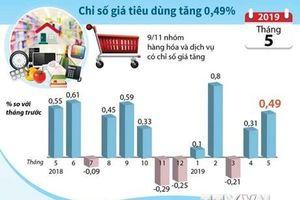 Chỉ số giá tiêu dùng cả nước tháng 5 tăng 0,49%