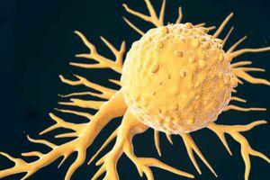 10 thực phẩm gây ung thư bạn nên tránh