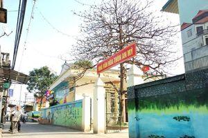 Hà Nội có 84% tổng số xã về đích nông thôn mới