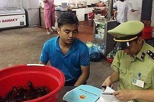 Quản lý thị trường Quảng Ninh xử lý 2 cửa hàng vi phạm kinh doanh tôm càng đỏ