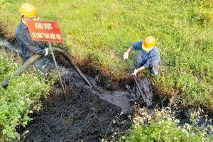 Cảnh báo môi trường đang bị hủy hoại nghiêm trọng vì chất thải độc hại