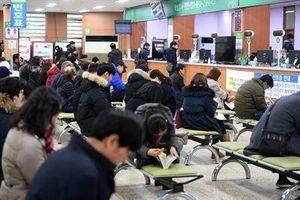 Hàn Quốc bắt 5 người Việt làm giả giấy phép lái xe