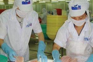 Thủy sản Hùng Vương mong manh cơ hội hồi phục
