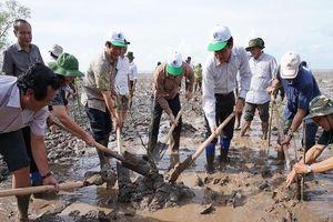 Bộ TN&MT phát động trồng rừng chống xâm nhập mặn tại Bạc Liêu