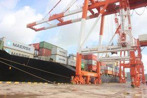 Chuyển giao 75,01% cổ phần cảng Quy Nhơn về sở hữu Nhà nước