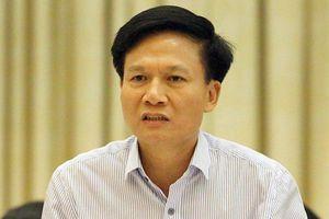 ĐBQH đặt nghi vấn vụ bán đảo Sơn Trà, Thanh tra Chính phủ nói gì?