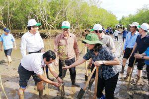 Phát động trồng rừng, tạo lá chắn bảo vệ đê biển Bạc Liêu