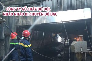 Cháy công ty gỗ, hàng chục hộ dân nháo nhào di chuyển đồ đạc
