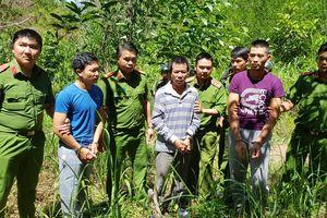 Đưa 3 nghi can thực nghiệm điều tra vụ hủy hoại hơn 10 ha rừng