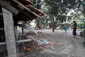 Hy hữu trộm xẻ thịt hai đùi sau bò đang mang thai ở Quảng Bình