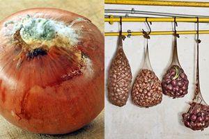 15 mẹo giúp bảo quản rau củ, trái cây tươi mới, không dập nát