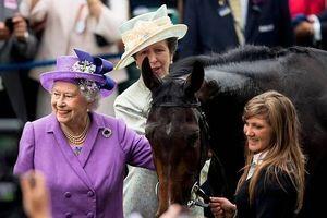 Nữ hoàng Anh Elizabeth II kiếm được số tiền tương đương 229 tỉ VNĐ từ việc đua ngựa
