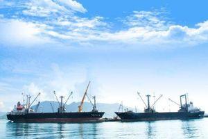 Đề xuất bổ sung 12 cảng biển phục vụ xuất nhập khẩu
