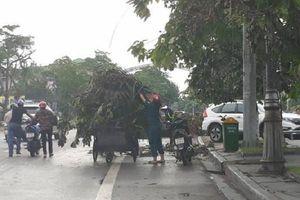 Nghệ An: Ban hành giá thu gom, vận chuyển, xử lý rác thải sinh hoạt mới