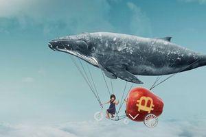 Giá tiền ảo hôm nay (31/5): 6 dấu hiệu khẳng định Bitcoin đang trong chu kỳ tăng giá mới