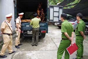 Ô tô tải vận chuyển lâm sản trái phép