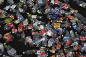 Quảng Ngãi quyết liệt ngăn chặn sản phẩm nhựa dùng một lần khó phân hủy