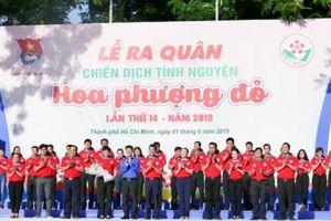 TP HCM: Khởi động Chiến dịch tình nguyện Hoa phượng đỏ năm 2019