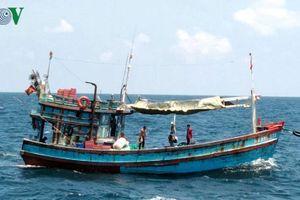 Tàu cá không giấy phép khai thác thủy sản có thể bị phạt đến 1 tỷ đồng