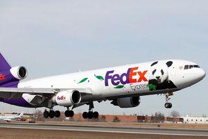 Trung Quốc điều tra tập đoàn chuyển phát nhanh FedEx của Mỹ