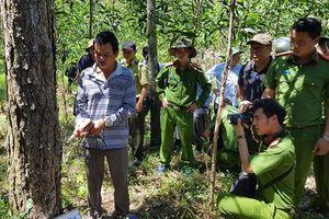 Công an đã bắt 'ông trùm' hủy hoại rừng thông Lâm Đồng