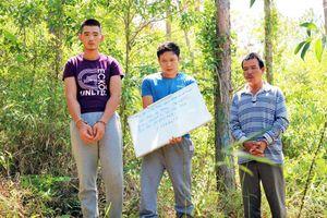 Trốn sang Lào, kẻ cầm đầu vụ đầu độc 10ha rừng vẫn không thoát