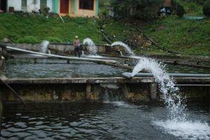 VCCI: Không nên tăng phí bảo vệ môi trường với nước thải sinh hoạt