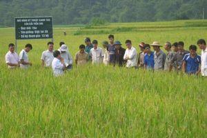 Cán bộ khuyến nông phải lắng nghe nông dân