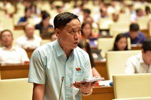 Sửa luật ở Quốc hội: Một số bộ chỉ cử cán bộ cấp phòng sang