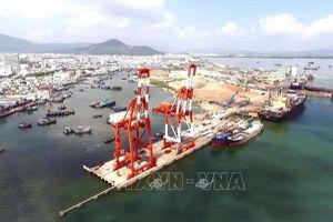 Vinalines chính thức tiếp nhận lại Cảng Quy Nhơn