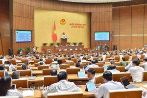 Quốc hội 'dùng dằng' trước các phương án đối với dự luật về rượu bia