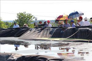 Đồng Nai: Công ty AB Mauri xin tạm dừng sản xuất để khắc phục sự cố môi trường