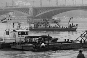 Chuyến du lịch định mệnh trên con tàu 'Nàng tiên cá'