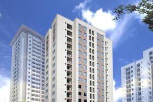 HUD bàn giao 300 căn hộ thu nhập thấp trong tháng 6